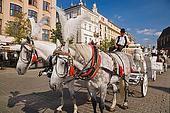 Mexican horse drawn carts