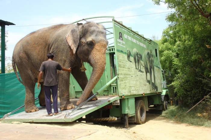Rhea coming out of the truck