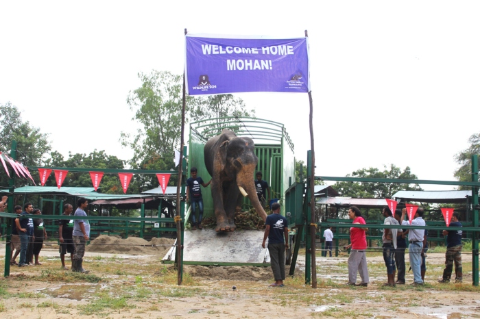mohan-after-rescue-coming-out-of-the-truck
