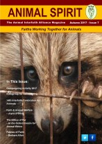 Front Cover - Issue 7
