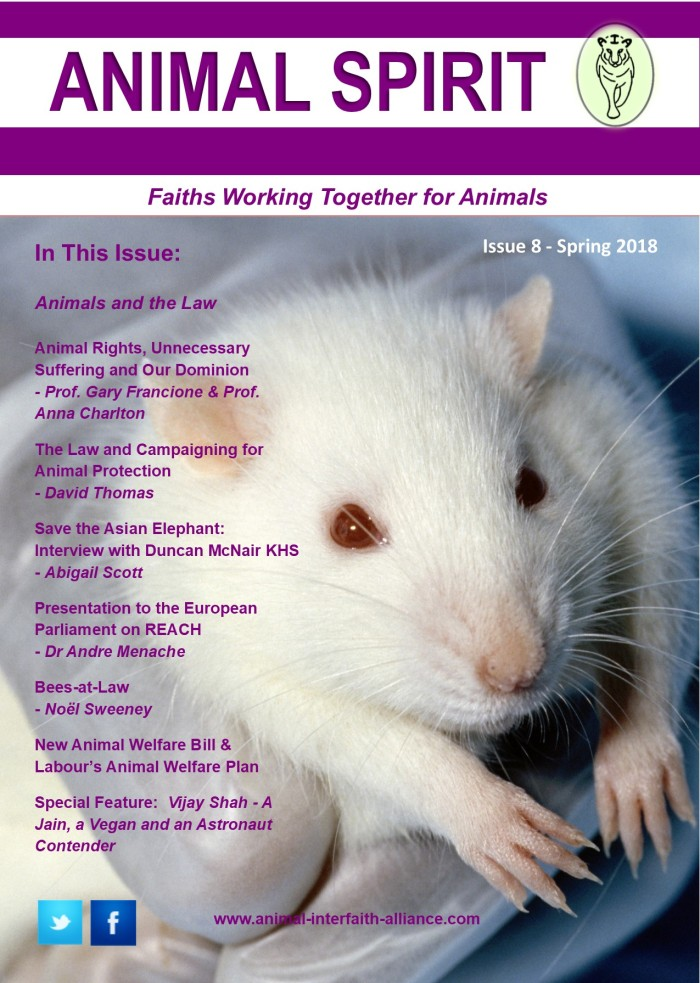 Issue 8 front page