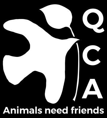QCA Dove - tagline-01
